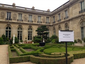 Elysee sculpted garden