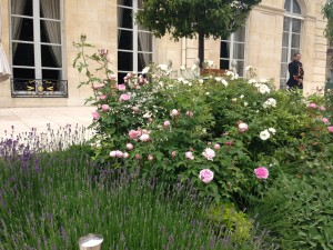 Elysee terrace lavender and roses