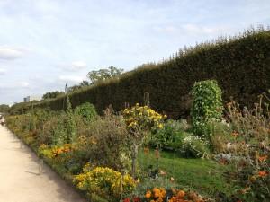 jardin des Plantes alleys