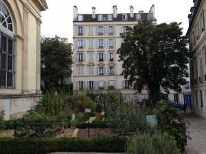 small garden that I over looked on rue Buffon