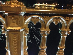 Nuit Blanche cob web over Seine